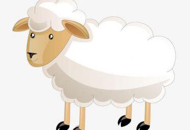 属羊的今年多大2021 属羊的人2021年几岁了