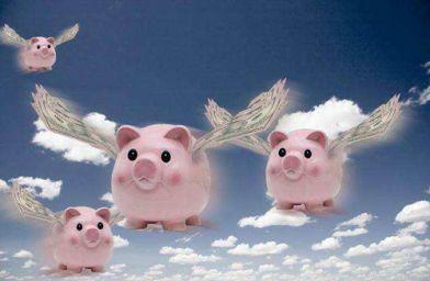 属猪的今年多少岁了 2021年属猪年龄对照表
