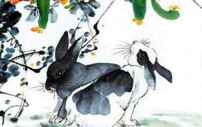 属兔的今年多少岁了 2021年属兔年龄对照表