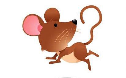 1972年属鼠的人命运 1972年属鼠的是什么命
