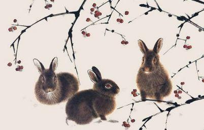 1951年属兔的人命运 1951年属兔的是什么命