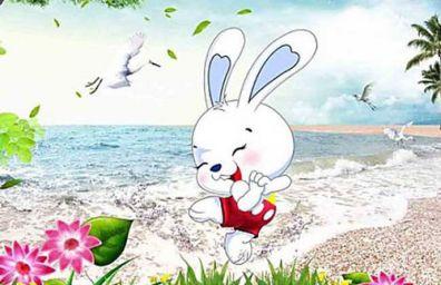 1987年属兔的人命运 1987年属兔的是什么命
