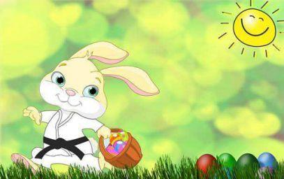 2011年属兔的人命运 2011年属兔的是什么命