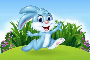 属兔五行属什么命 不同年份属兔五行属什么