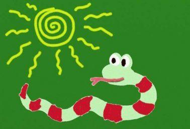 属蛇五行属什么命 不同年份属蛇五行属什么