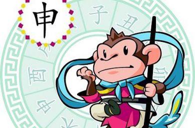 2004年属猴的人命运 2004年属猴的是什么命