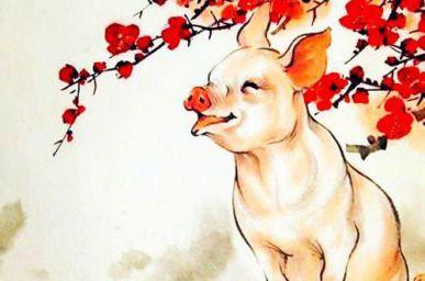 1971年属猪的人命运 1971年属猪的是什么命