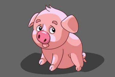 1959年属猪的人命运 1959年属猪的是什么命