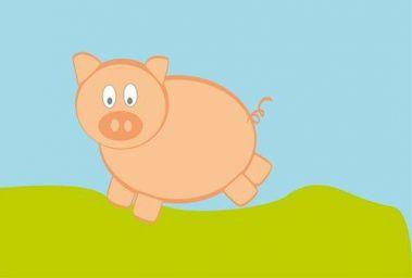 属猪是哪年出生的 属猪年份对照表