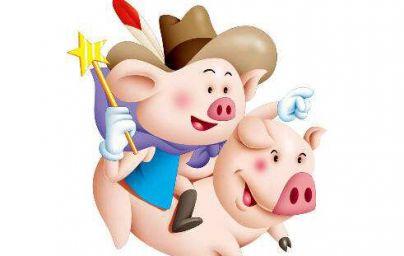 属猪年龄对照表 属猪的今年多大