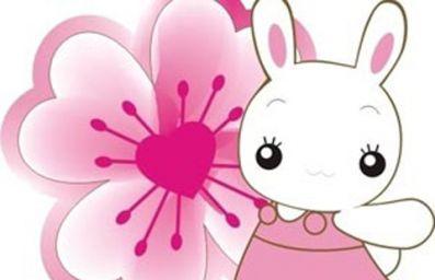 兔年宝宝几月出生最好命