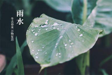 2021雨水几月几号  2021雨水节气结婚好吗