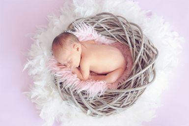 2021年二月二龙抬头出生的宝宝取名宜用字有哪些?